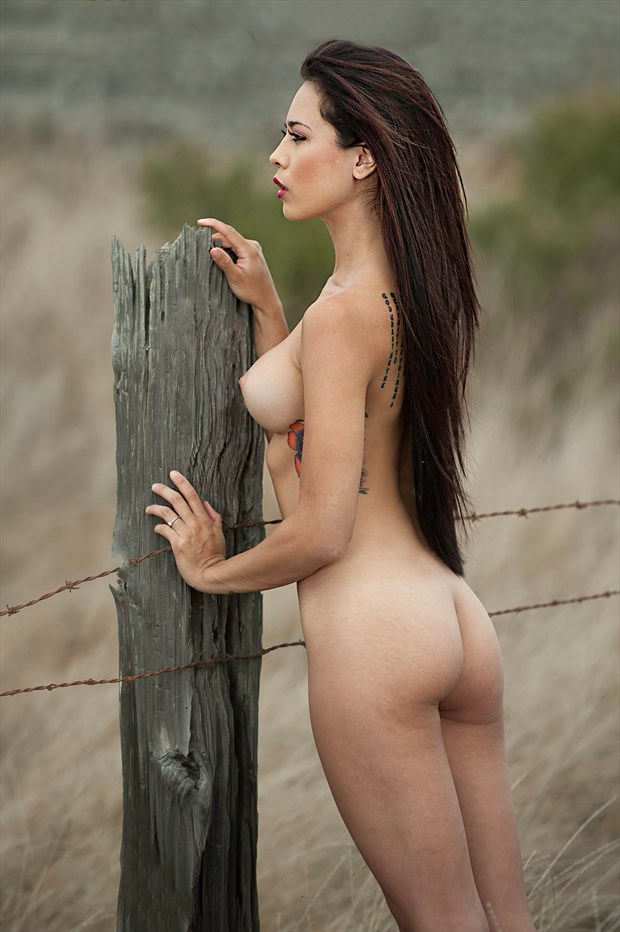 %22Fence Sitter%22 Glamour Photo by Photographer Bill Lemon
