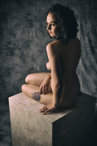 %230982 Artistic Nude Photo by Photographer Mike Willingham
