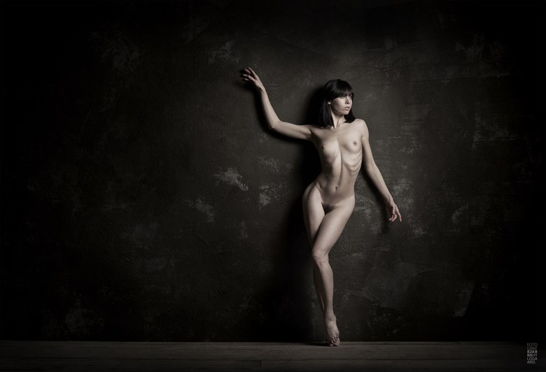 %C2%A9 Bjarne Hyldgaard Artistic Nude Photo by Model Fawnya