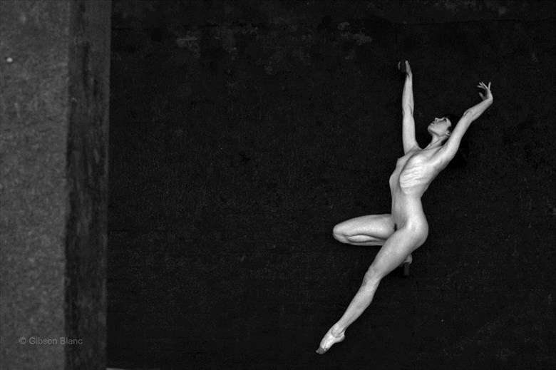 %C2%A9 Gibson Blanc Artistic Nude Photo by Model Fawnya