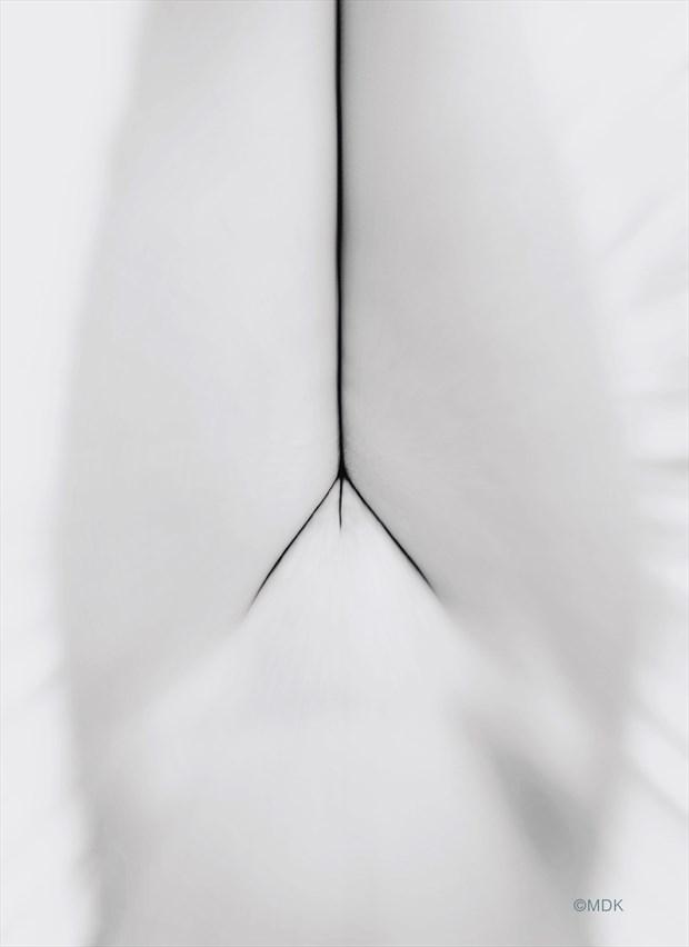 'poetic geometry' Artistic Nude Photo by Photographer Mandrake Zp %7C MDK