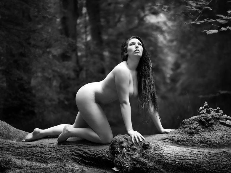 deep in the forest artistic nude photo by photographer paul mason