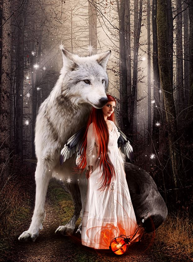 fairies woods fantasy artwork by artist karinclaessonart
