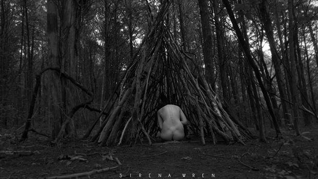 tree artistic nude photo by model sirena e wren
