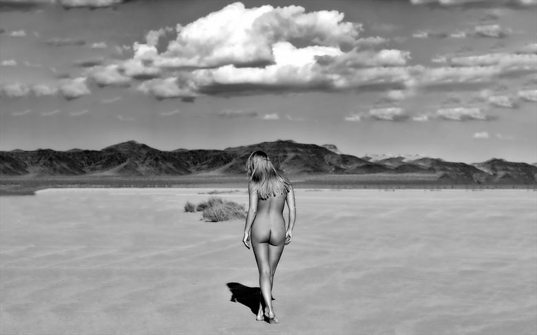 wide open spaces artistic nude photo by photographer bill lemon