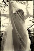 Paiges' Wedding Dream