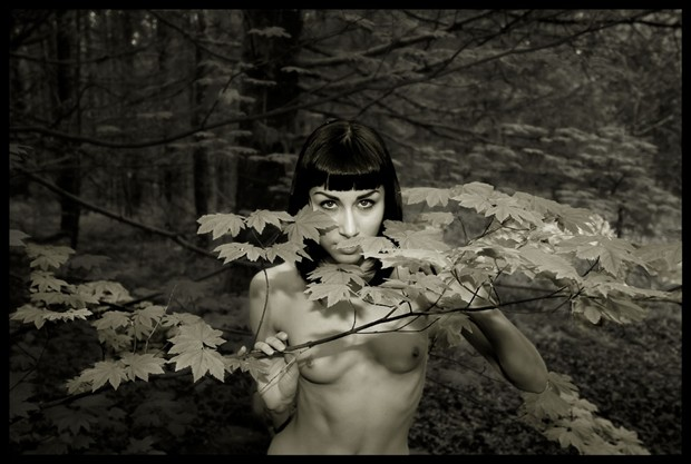 2011 Kira in the Portland Gorge Artistic Nude Photo by Photographer R. Michael Walker