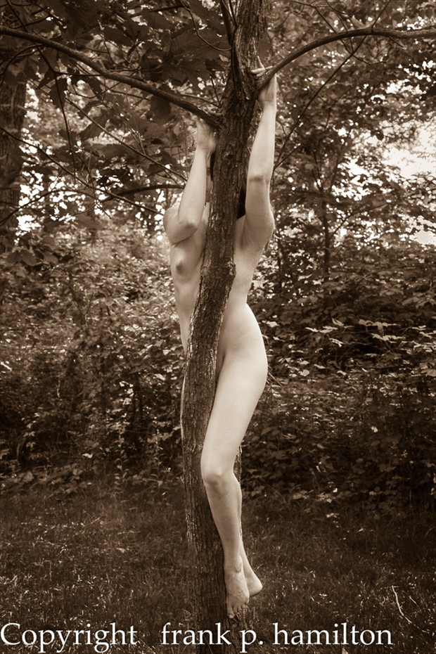 20112_05_27_Z_189 Artistic Nude Photo by Photographer PhotoFrank