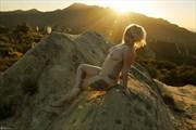 California-Jay in Malibu