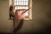 Autumun in the window