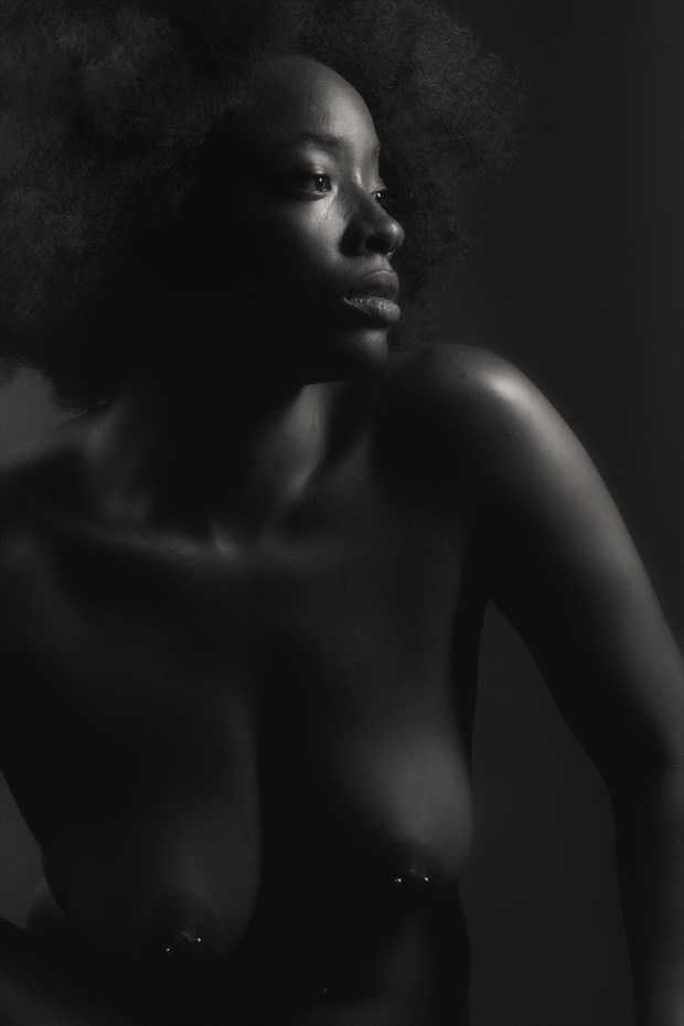 A Regal Profile Artistic Nude Photo by Photographer Excelsior
