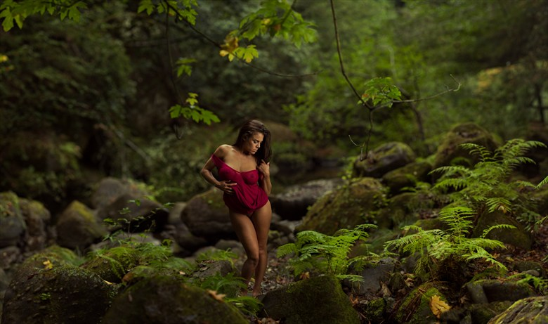A rose within the greenery  Artistic Nude Photo by Model Ceara Blu