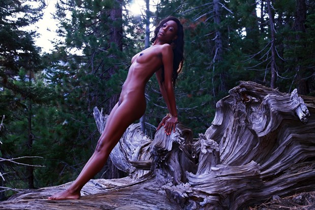 APEX Artistic Nude Photo by Photographer Muse Evolution Photography