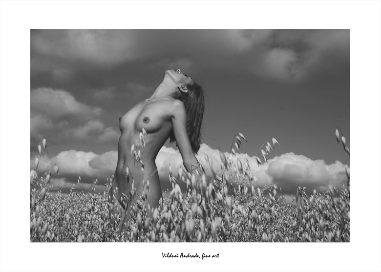 AVEIAL Artistic Nude Photo by Artist VILDNEI ANDRADE