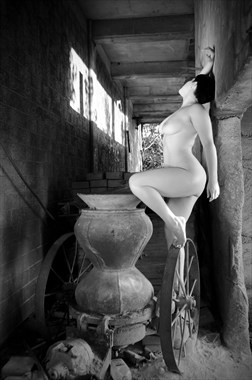 Abandon What's Known Artistic Nude Photo by Photographer Natural Imaging