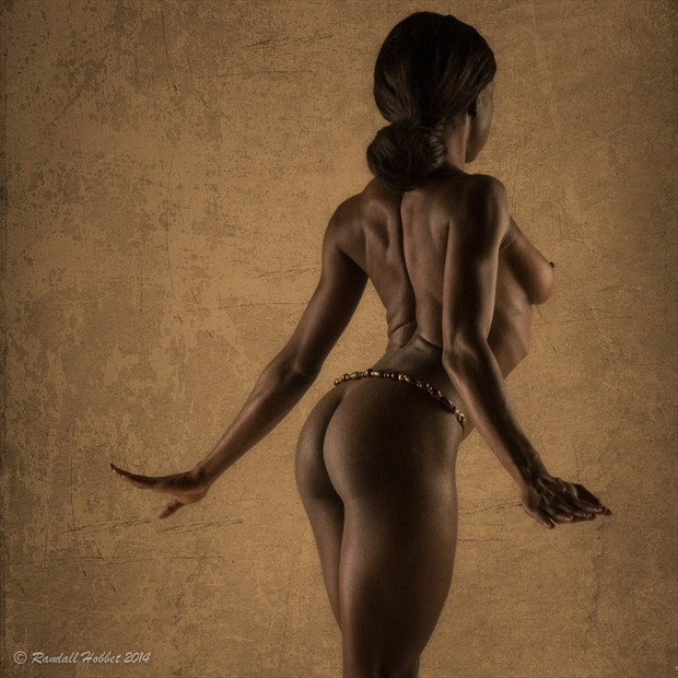 Afrodite 1 Artistic Nude Photo by Photographer Randall Hobbet