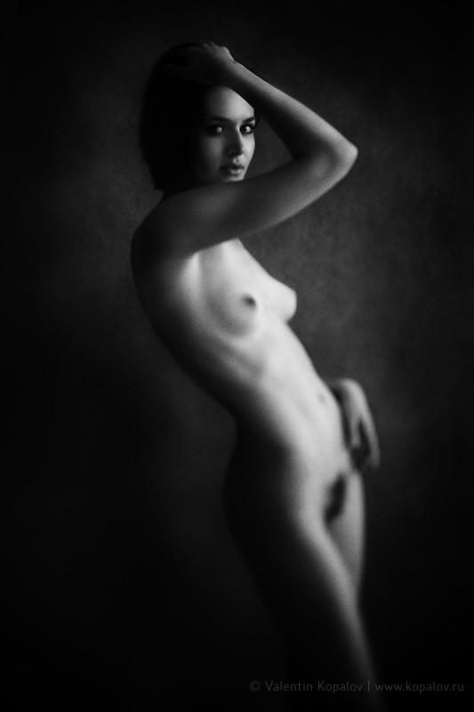 Akt Artistic Nude Photo by Photographer Valentin Kopalov