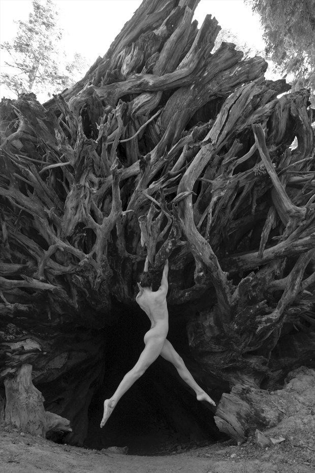 All that lives, dies Artistic Nude Artwork by Photographer The Things I've Seen