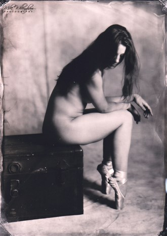 Alyson  Wet plate on 5x7 tintype Artistic Nude Photo by Photographer Mike Willingham