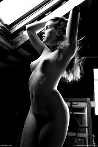 Amarna in Sunlight Artistic Nude Photo by Photographer Michelle7.com