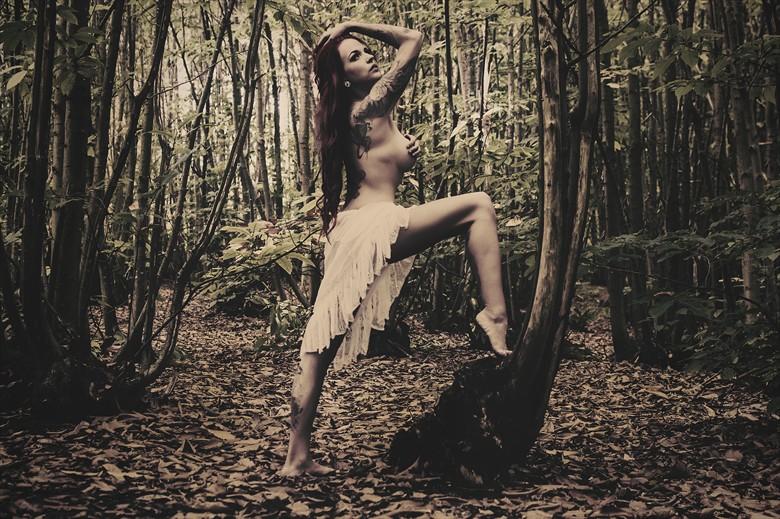 Amazon Nature Photo by Photographer Starglider