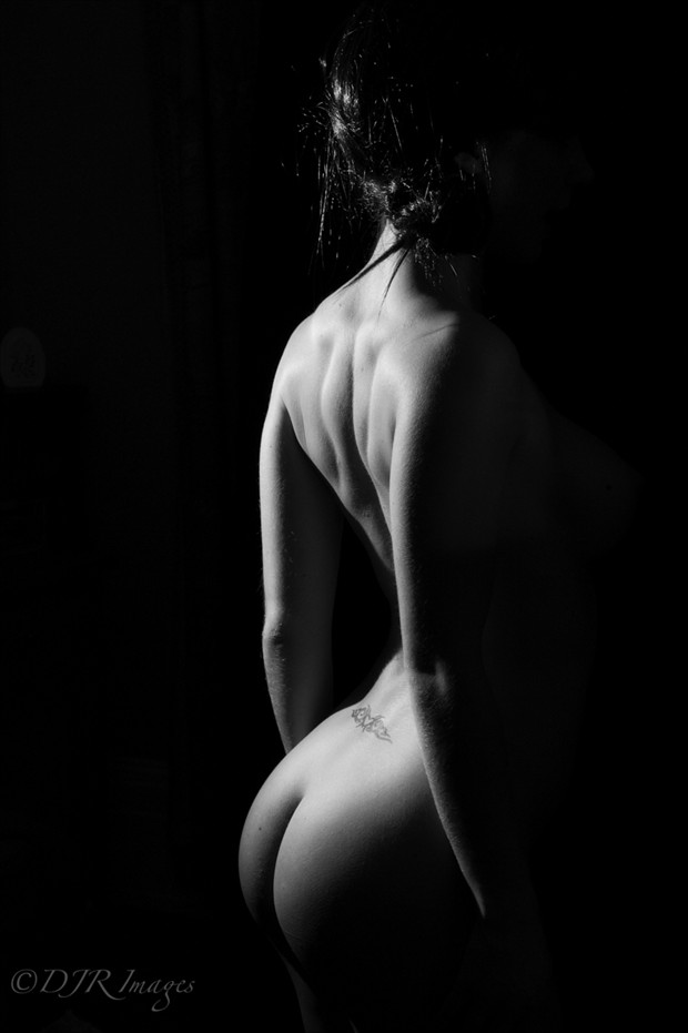 Amelie 1 Artistic Nude Photo by Photographer DJR Images