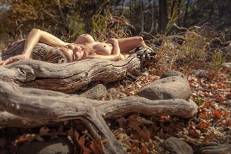 Among the Roots Artistic Nude Photo by Photographer Dream Digital Photog