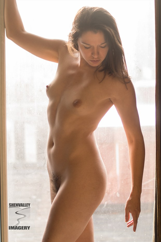 Amy in Morning Light Artistic Nude Photo by Photographer ShenValley Imagery