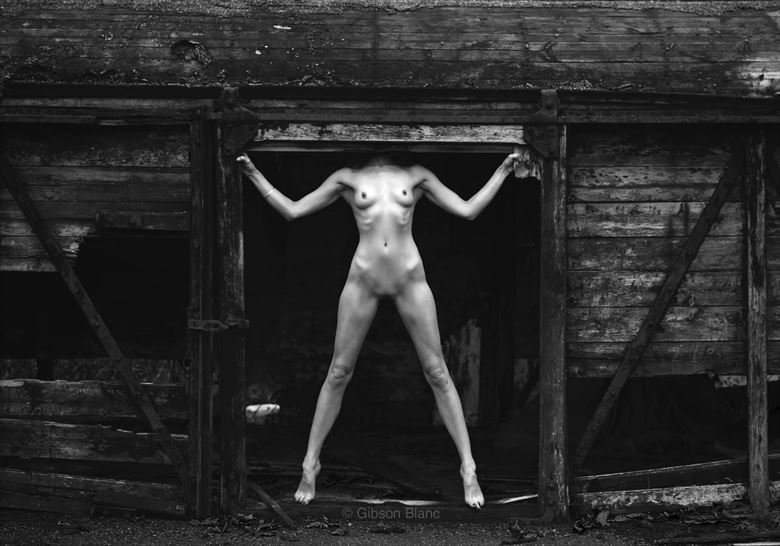 Anonymous Artistic Nude Photo by Photographer Gibson
