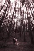 Arboreal Shrine Artistic Nude Photo by Photographer Opp_Photog