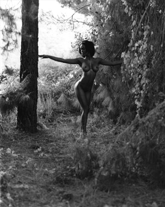 Arrey in SoCal Artistic Nude Photo by Photographer JMaloney