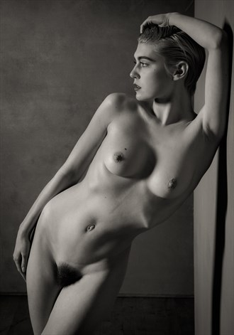Art Deco Nude Study Artistic Nude Photo by Photographer Risen Phoenix