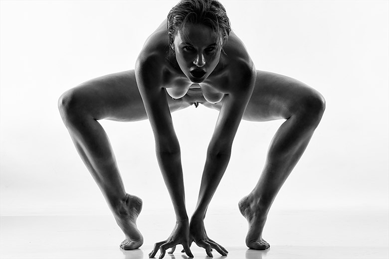 Artistic Nude Abstract Photo by Model Astrid Von Winter