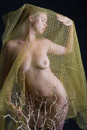 Artistic Nude Abstract Photo by Model LoveInfinity