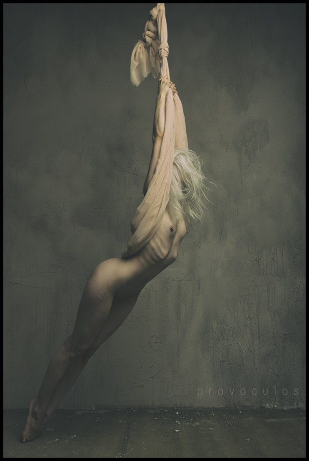 Artistic Nude Abstract Photo by Model Ryann S