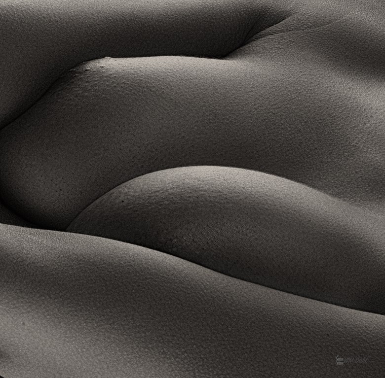 Artistic Nude Abstract Photo by Photographer Bill Dahl