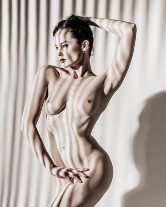 Artistic Nude Abstract Photo by Photographer terrymemoryphoto