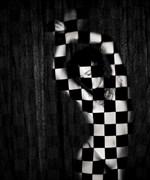 Artistic Nude Alternative Model Photo by Photographer SERVOPHOTO