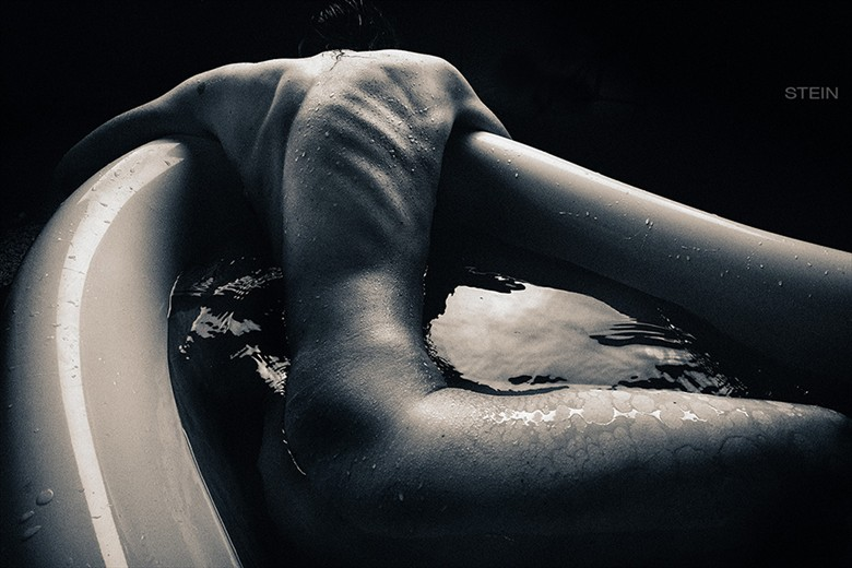 Artistic Nude Artwork by Photographer STEIN