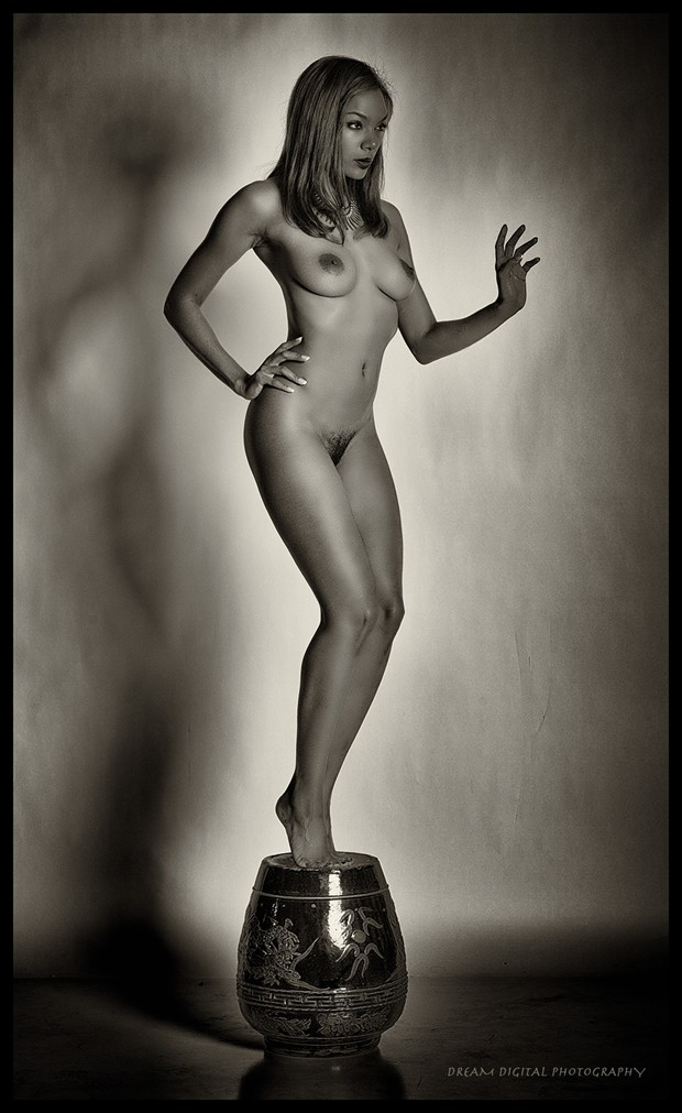Artistic Nude Erotic Photo by Photographer Dream Digital Photog