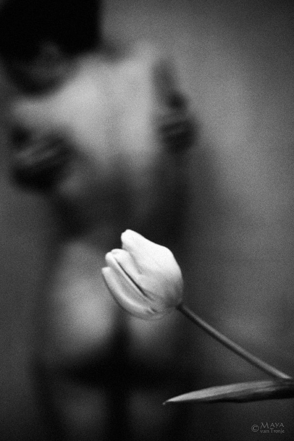 Artistic Nude Erotic Photo by Photographer Maya van Tronje