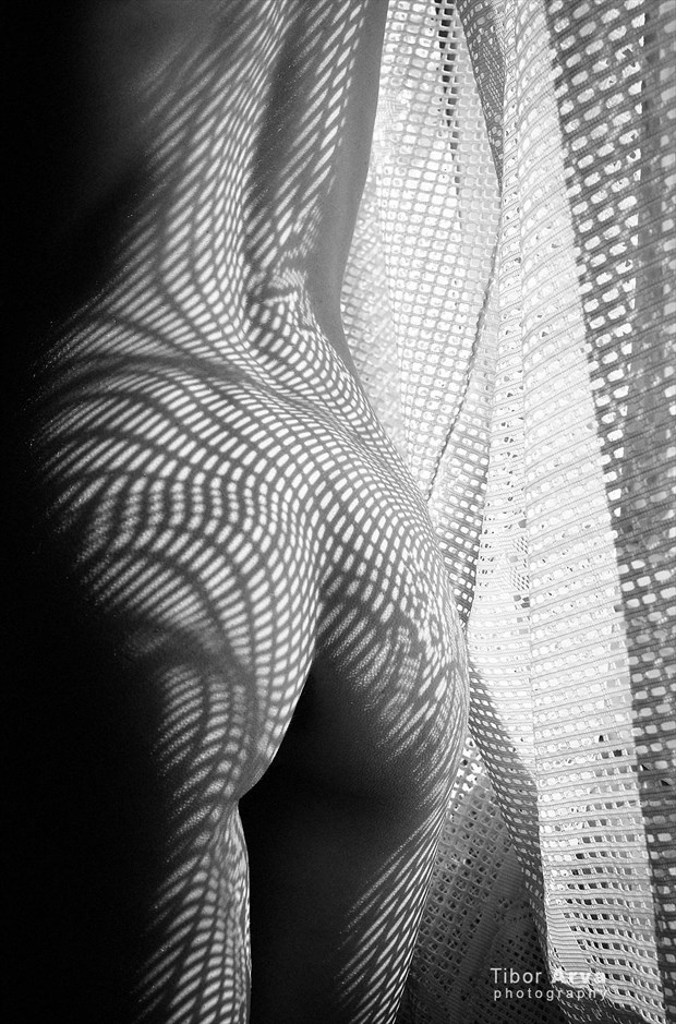 Artistic Nude Erotic Photo by Photographer Tibor Arva