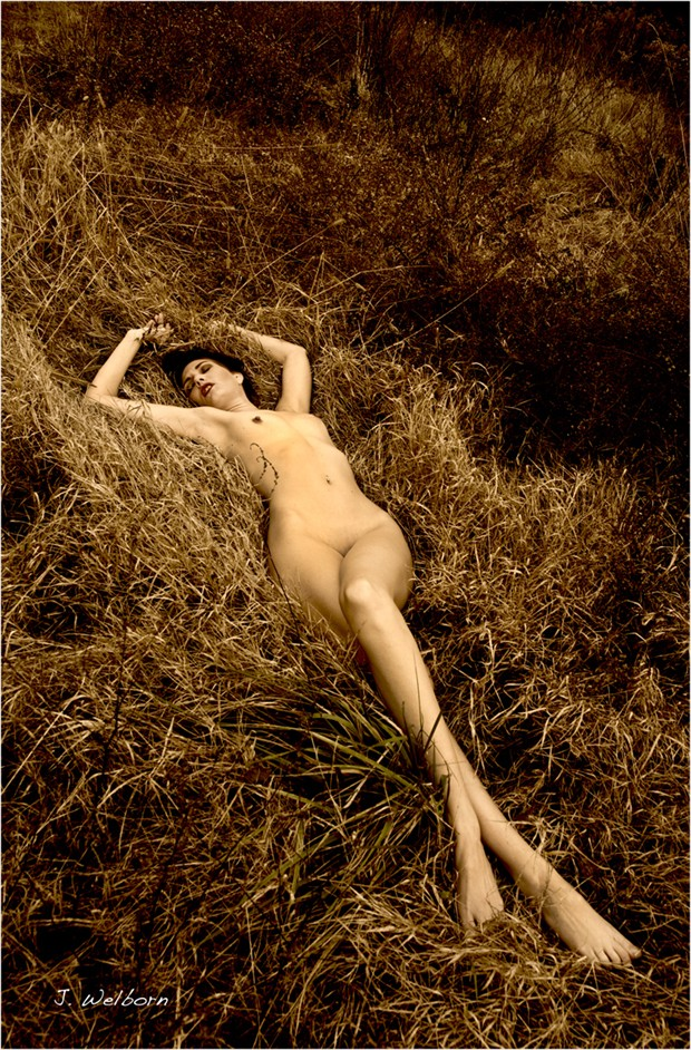 Artistic Nude Figure Study Artwork by Model Southern Sweetness