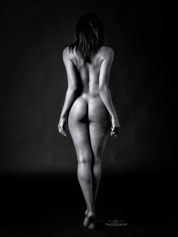 Artistic Nude Figure Study Artwork by Photographer mehamlett
