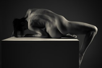 Artistic Nude Figure Study Artwork by Photographer mozinwrat
