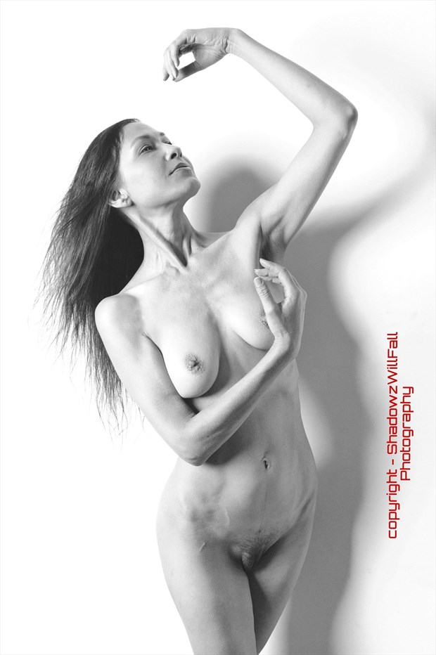 Artistic Nude Figure Study Photo by Model Vox Serene