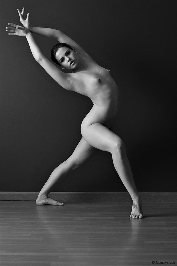 Artistic Nude Figure Study Photo by Model Z