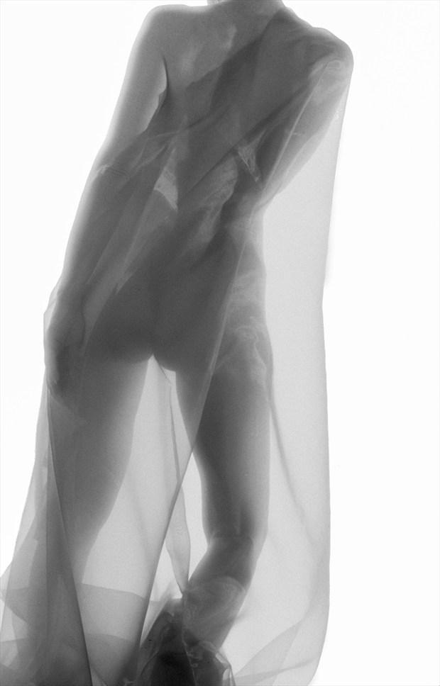 Artistic Nude Figure Study Photo by Photographer ewe