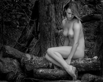 Artistic Nude Figure Study Photo by Photographer wsclesky