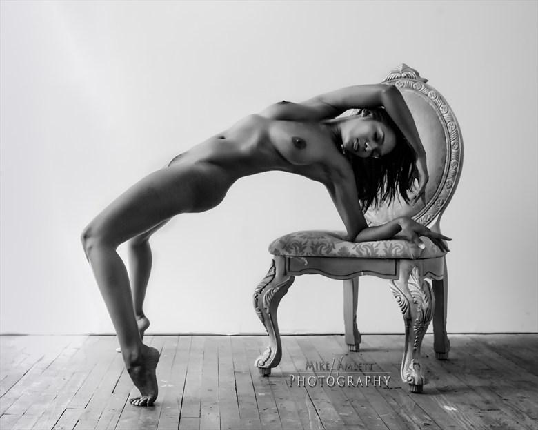 Artistic Nude Glamour Artwork by Photographer mehamlett